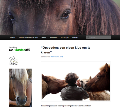 websitepaardenblik